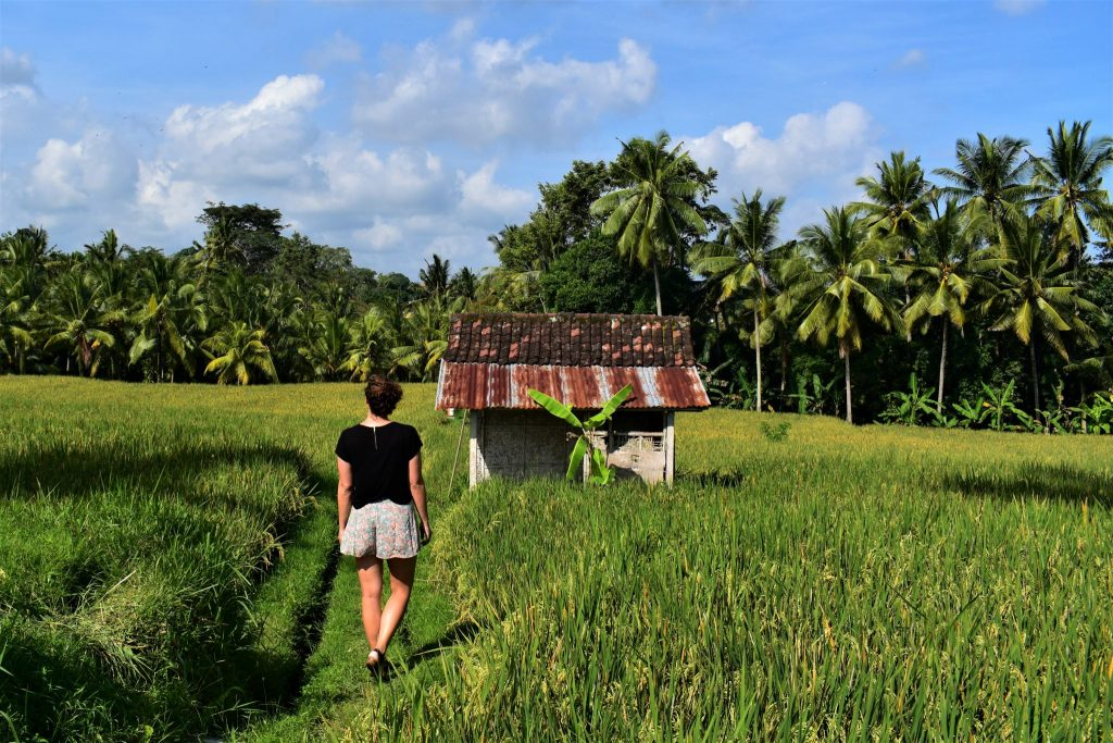 How to Save For Travel Ubud