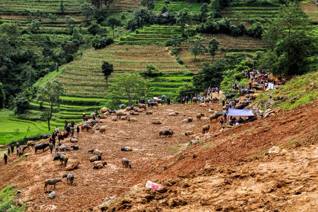 Off the beaten path in Northern Vietnam