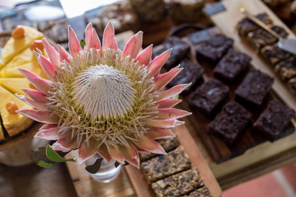 Spier Farm Kitchen Flower and Brownies