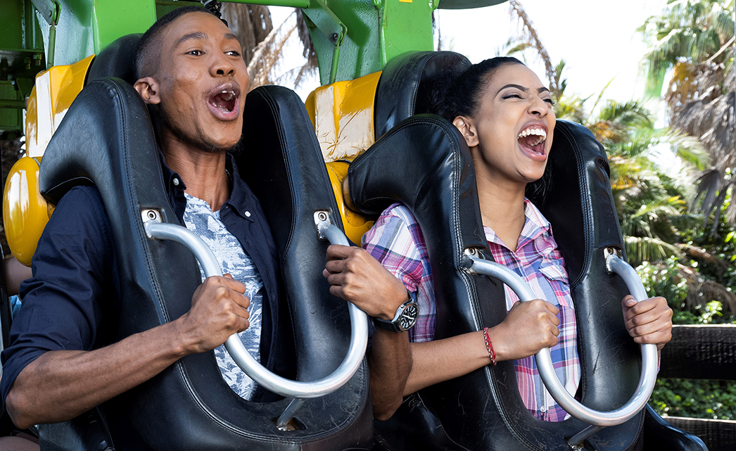 Have Fun At The Gold Reef City Theme Park